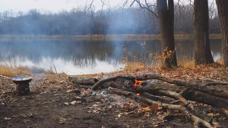 à beira do lago : Burning campfire on the shore of an autumn forest lake