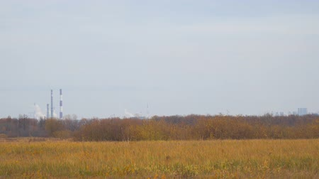 petroleum refinery : Smokestacks in the distance on the background of autumn meadows