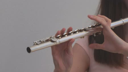 flet : The girl plays the flute. Wind instruments