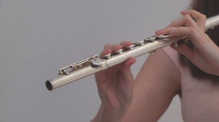 clarinet : The girl plays the flute. Wind instruments