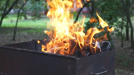 briquettes : The fire of barbecue burning in the grill. Slow motion