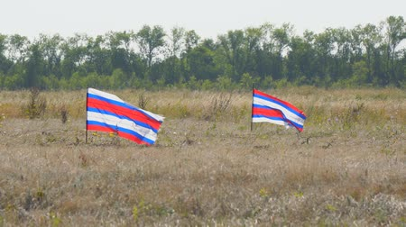 明るく照らされた : Just two striped flags waving in the wind on a natural background