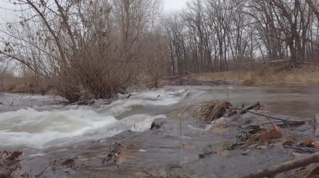 Stormy water flow of the forest river in late autumn on a cloudy day