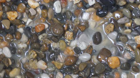 Muddy water bubbles among the small stones. Thermal source, or a chemical reaction Stockvideo
