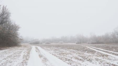 View of a snow covered glade or meadow on a cloudy foggy day. Camera panning Stock Footage