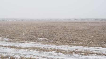 View of a snow covered glade or meadow on a cloudy foggy day. Camera panning Stockvideo