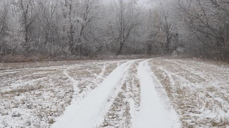 The camera glides over the snow-covered country road. The point of view walking on a snowy forest path