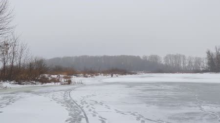 View of a frozen river or lake. In the distance you can see the winter forest. Camera panning Vídeos