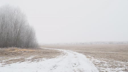 snowfield : View of a snow covered glade or meadow on a cloudy foggy day. Camera panning Stock Footage