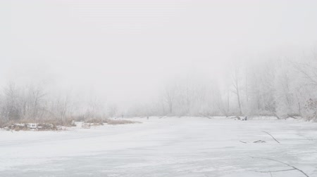 water feature : Winter river in the fog. Fishermen on the ice fishing. The trees are beautiful hoarfrost Stock Footage