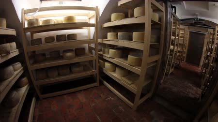pieces of cheese : HD1080p: Big storage of cheese of different kinds