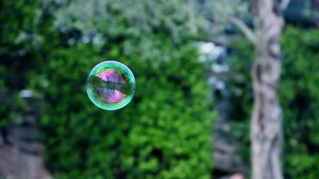 bańki mydlane : Flying soap bubble on green lawn