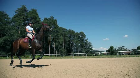 cavalinho : learning and riding horse in the nature and preparing for comeptition