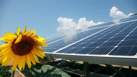 image house : Solar power station with sunflower infront