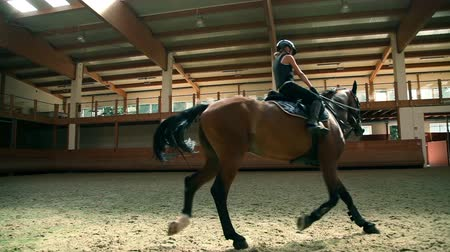 equipamentos esportivos : Doing training on horse at young age