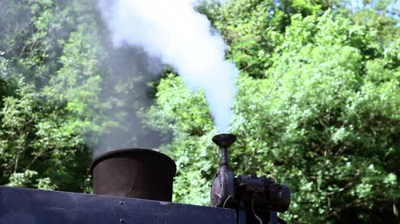 lokomotif : Shot of the steam going out of the chimney of the steam locomotive Stok Video