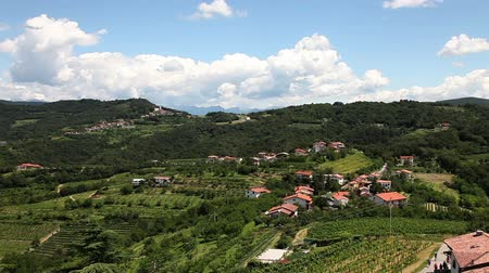 údolí : Panoramic shot of willage near Gorizia with a lot of vineyards