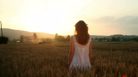 rolnik : Woman looking at sunset on a golden field Wideo