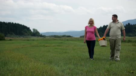 girassóis : Wife and husband walking vivaciously with picnic basket