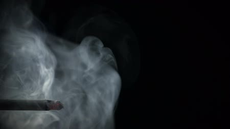 ninhada : Cigarette with exhaled smoke brooding in the air