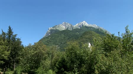 slovenya : Mountains with the green forrest in the forefront