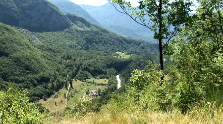 údolí : Valley view from great heights at the edge of the forrest