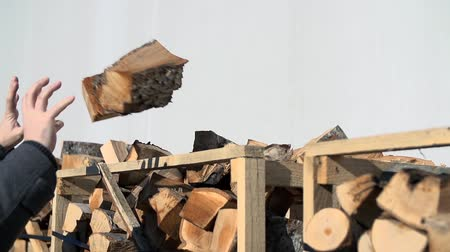 briquette : Ma throws two logs onto a pile