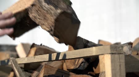 oak wood : Detail of stacking the logs onto a pile  Stock Footage