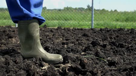 sociedade : Gardener with boots walking on the farmyard manure on the cow shit and start home organic garden