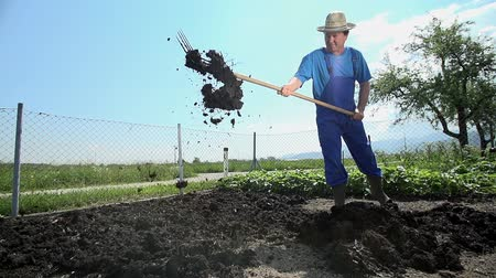 comunidade : Gardener split big peaces of manure on to small peaces and start to prepare soil for bio organic farming.. Vídeos
