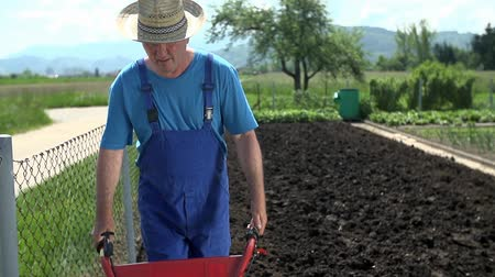 biyolojik : Slow motion of gardener walking on the manure on the field of his home garden. Stok Video