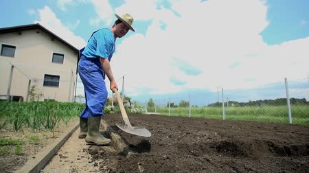 ásta : Farmer returns the soil to the plowed field with his shovel