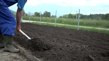 ásta : Grower uses the shovel to make some holes into the plowed field Stock mozgókép