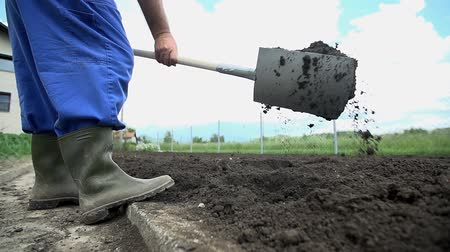 Łopata : Close shot of farmer shovel the soil around