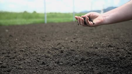 farm equipment : Male hand checks the quality of the soil Stock Footage