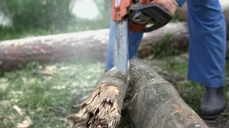 цепь : Cutting through log close up slow motion. Close up of main in blue working clothes cutting logs for winter in slow motion.