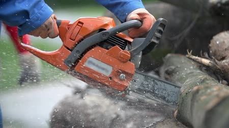 doğrama : Cutting through wood with chainsaw in slow motion. Close up of man in blue work clothes and protective gloves holding motorized chainsaw.