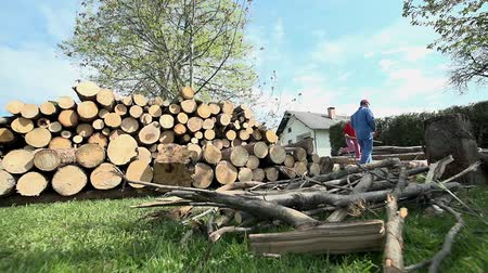 palivové dříví : Wide shot with logs on floor and cutted on pile for storage. Wide low angle shot of worker in blue collar clothes cutting logs with young lady helping.