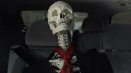 kosterní : Tilt on seat belted skeleton in moving car in business dress. Medium shot of dressed up businessman skeleton driving in car in slow motion. Dostupné videozáznamy