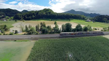 elpusztított : Train travel over flooded countryside fields aerial shot. Wide air shot on a sunny day with green flooded corn field and train driving through. Stock mozgókép