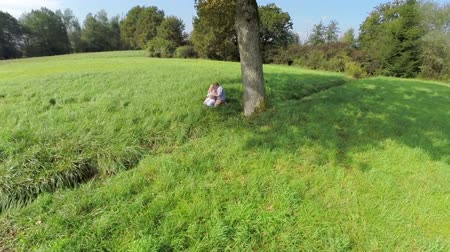 just born : Single tree on the field and family with child under. Aerial shoot of a big single tree on a grass field and family under spending magical moment with their just born sun Stock Footage