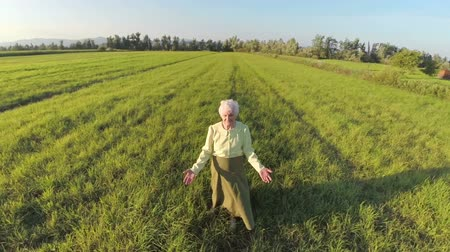 país : Old woman with grey hair slowly walking on a grass field at sunset. Aerial slow motion shoot of an old woman with grey hair and pissitive spirit slowly walking on a grass field at sunset with shadow