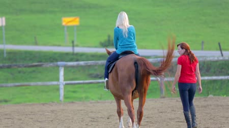 horse riding : Horseback riding training hour. Footage of a young woman on a horse riding lessons on the ranch in the middle of a beautiful landscape.