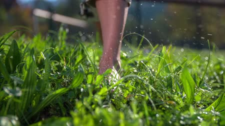 traverse : While walking on the grass drops of water atomising around. Slow motion close up RAW footage of a woman walking in the grass barefoot and the drops of water are flaying around.