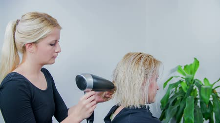 cutting up : Slow motion close up RAW footage of a women at hair stylist and the young hair dresser is blow draying her hair. Stock Footage
