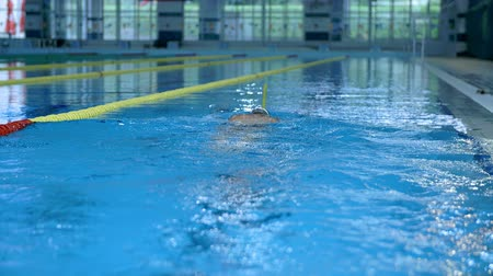 planta de interior : This is undervater swimming in swimming pool which is on a beautiful location in the middle of nature which is placed in a beautiful environment on countryside. Stock Footage