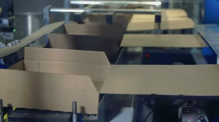 automatizálás : In this video, we can see that the robots are putting white base in the cardboard boxes on a conveyor belt. Close-up shot.