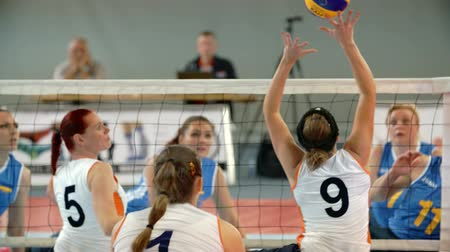 volleyball : EVENT PARA-VOLLEYBALL PODÄŒETRTEK 11.10.2015: In this video, we can see a great game between two different volleyball teams. Close-up shot. Stock Footage