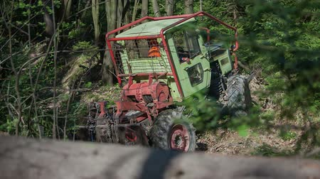 trator : A tractor is driving backwards and then up on a small bumps. Then he goes back again in order to pin tree trunks and take them out of a forest. Wide-angle shot.