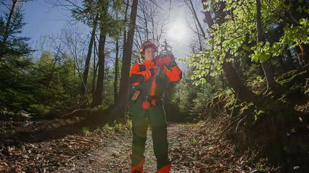 career path : A young forestman is wearing a protection gear and a helmet. He is having a chainsaw on his shoulder. He is standing on a forest path. The lighting is beuatiful and the sun is shining through tree leaves.